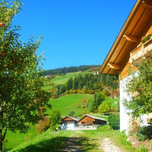 bauernhofurlaub-villnoesstal (4)