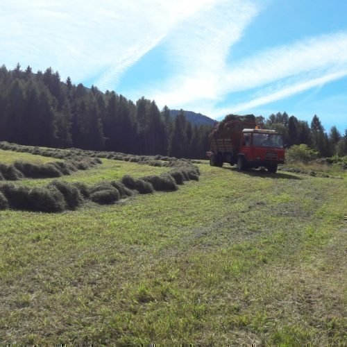Echter Bauernhofurlaub im Villnößtal (9)