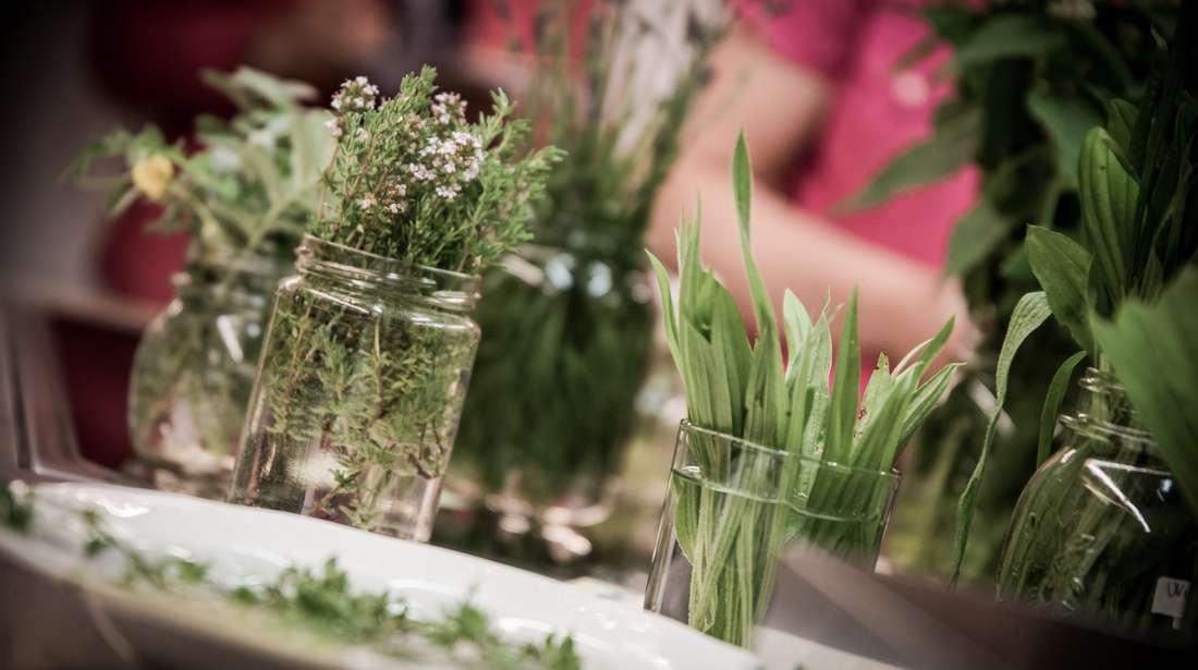 Kräuterkunde in Villnöss: Viriditas – die Grünkraft des Frühlings entdecken